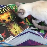 [REVIEW] Strayed Volume 1 from Dark Horse Comics is Worthy of 7 of its 9 Lives
